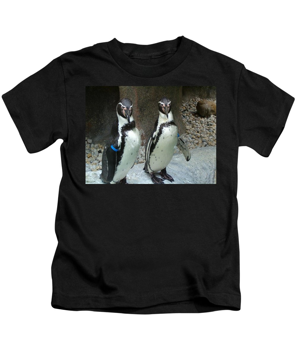 Penguin Kids T-Shirt featuring the photograph Penguin Duo by Sara Raber