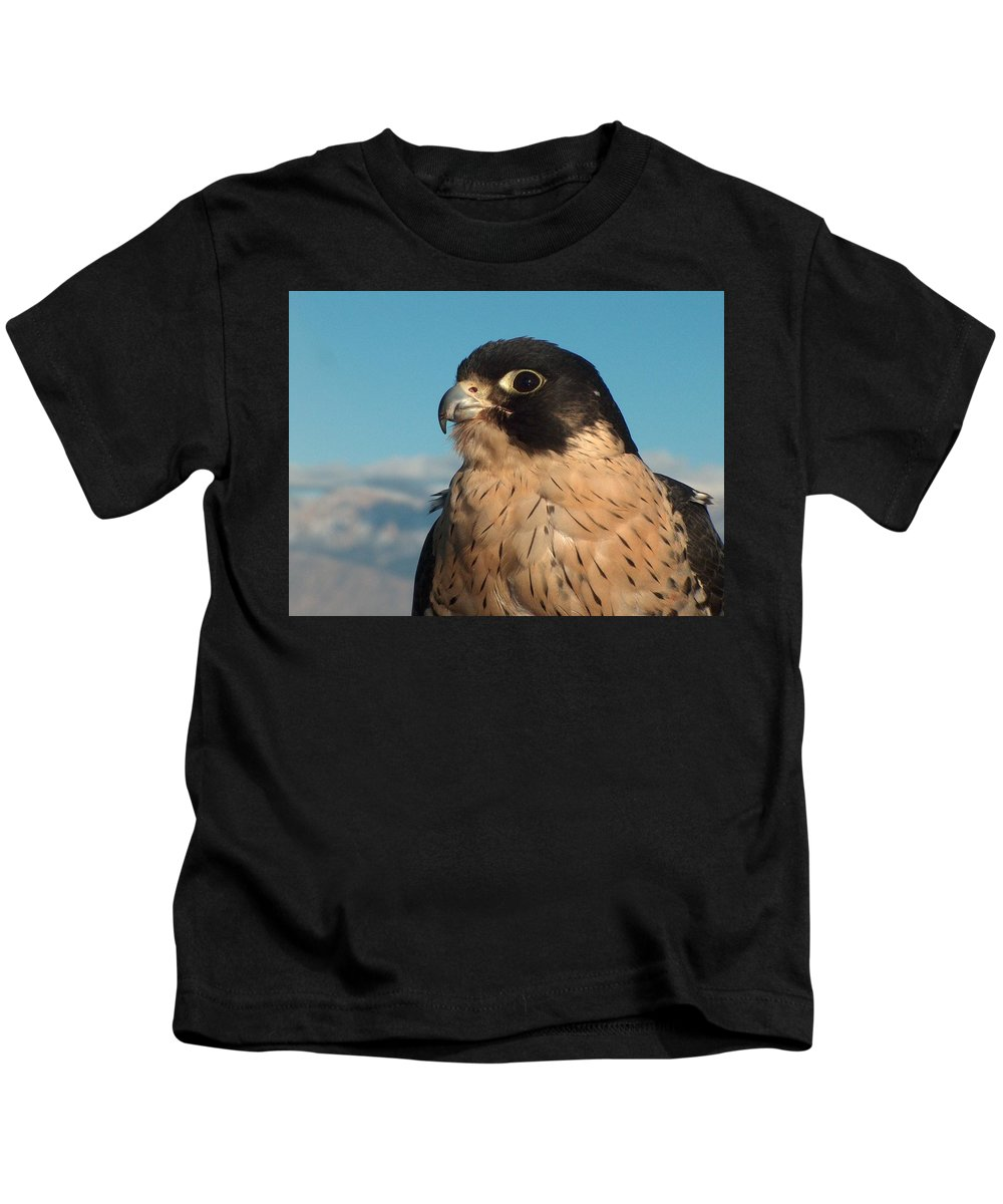 Peregrine Falcon Kids T-Shirt featuring the photograph Peregrine Falcon by Tim McCarthy