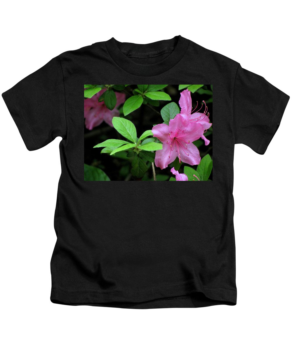 Flowers Kids T-Shirt featuring the photograph Perfect by Deborah Crew-Johnson