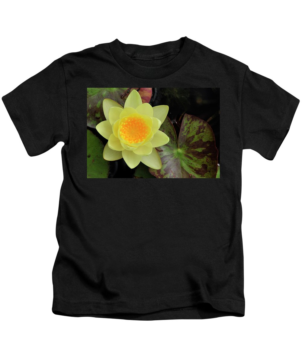 Water Lilly Kids T-Shirt featuring the photograph Perfect Flower by David Arment
