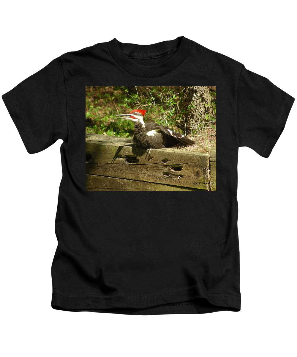 Faunagraphs Kids T-Shirt featuring the photograph Pileated Woodpecker1 by Torie Tiffany