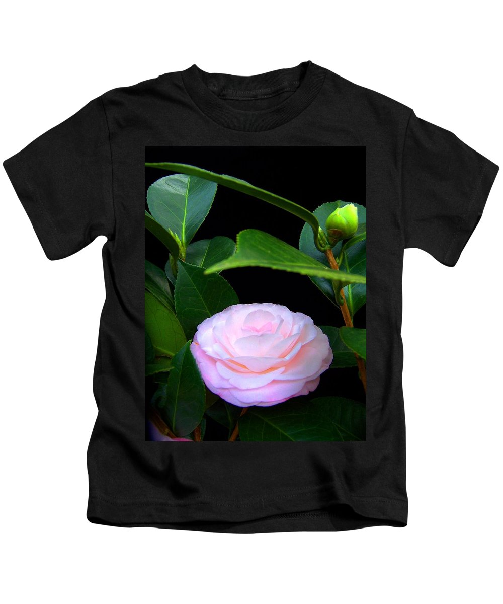 Camelia Kids T-Shirt featuring the photograph Pink Camelia by Laurie Paci