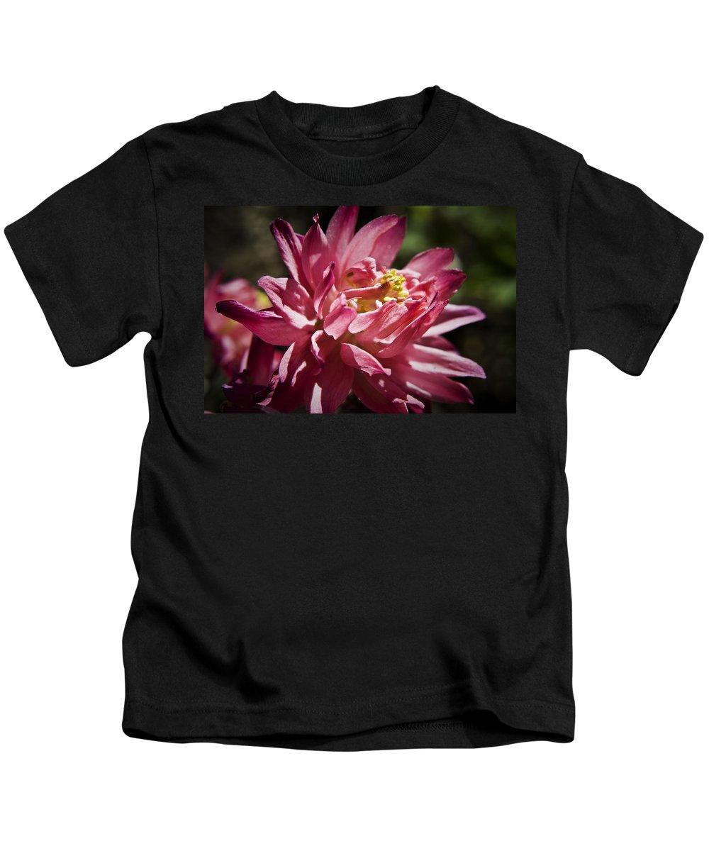 Columbine Kids T-Shirt featuring the photograph Pink Columbine by Teresa Mucha