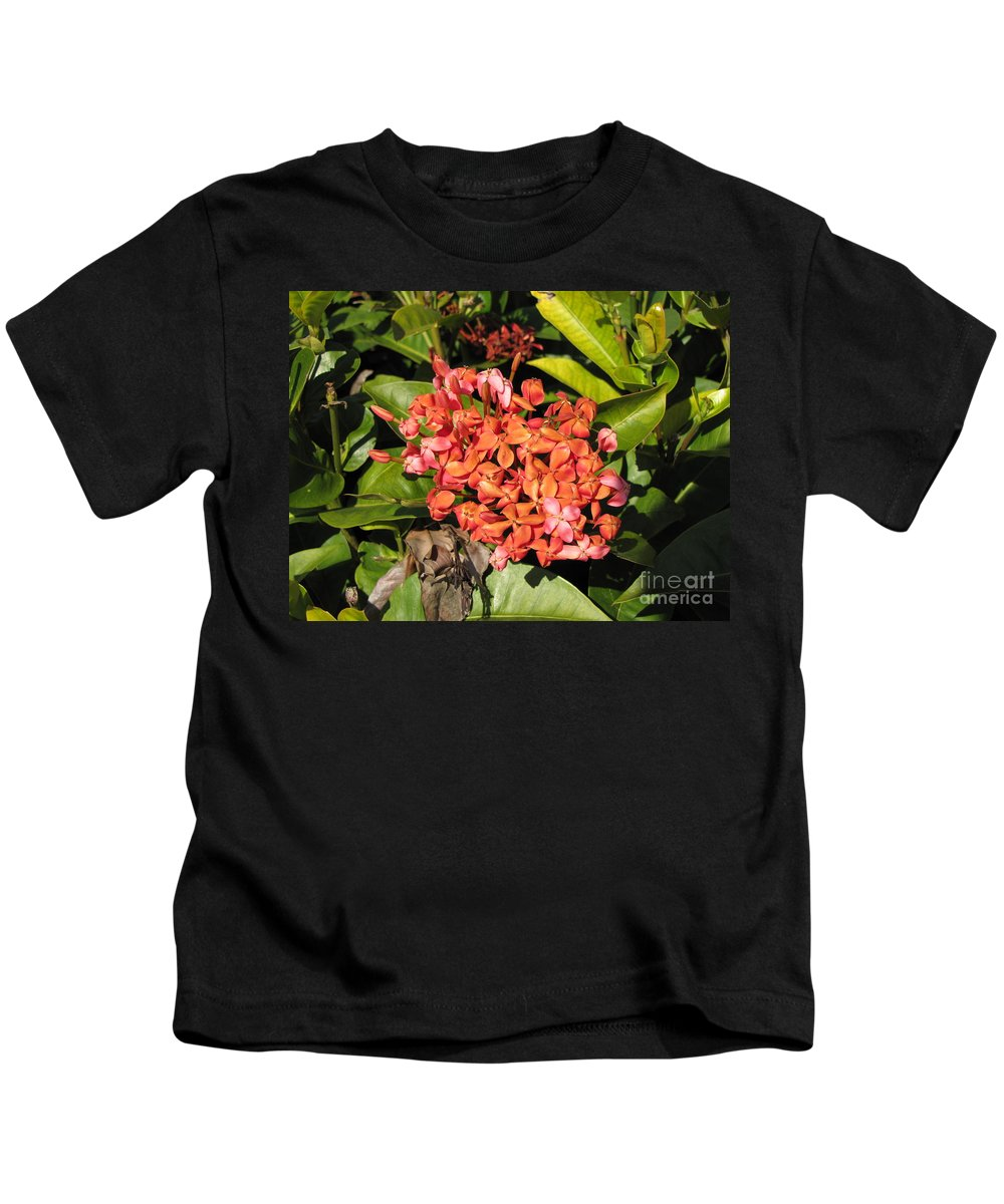 Flowers Kids T-Shirt featuring the photograph Pink Flower by Michelle Powell
