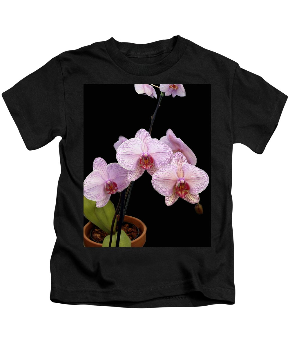 Flowers Kids T-Shirt featuring the photograph Pink Orchids by Kurt Van Wagner