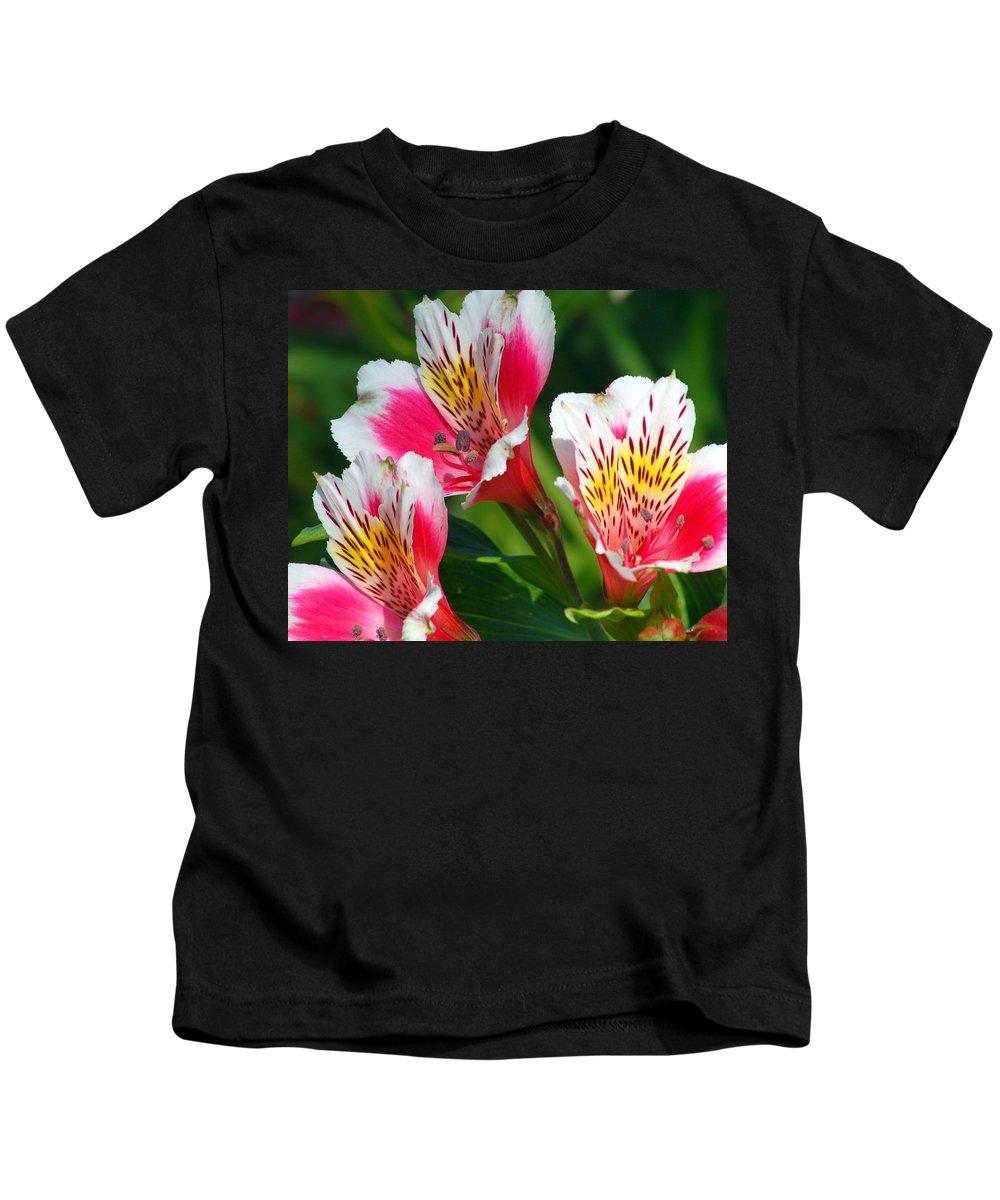 Peruvian Kids T-Shirt featuring the photograph Pink Peruvian Lily 2 by Amy Fose
