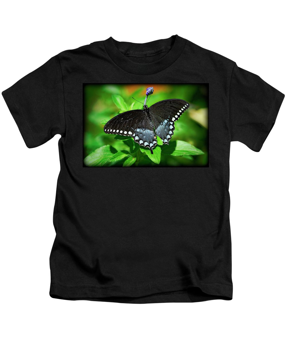 Pipevine Swallowtail Butterfly Kids T-Shirt featuring the photograph Pipevine Swallowtail Butterfly by Saija Lehtonen