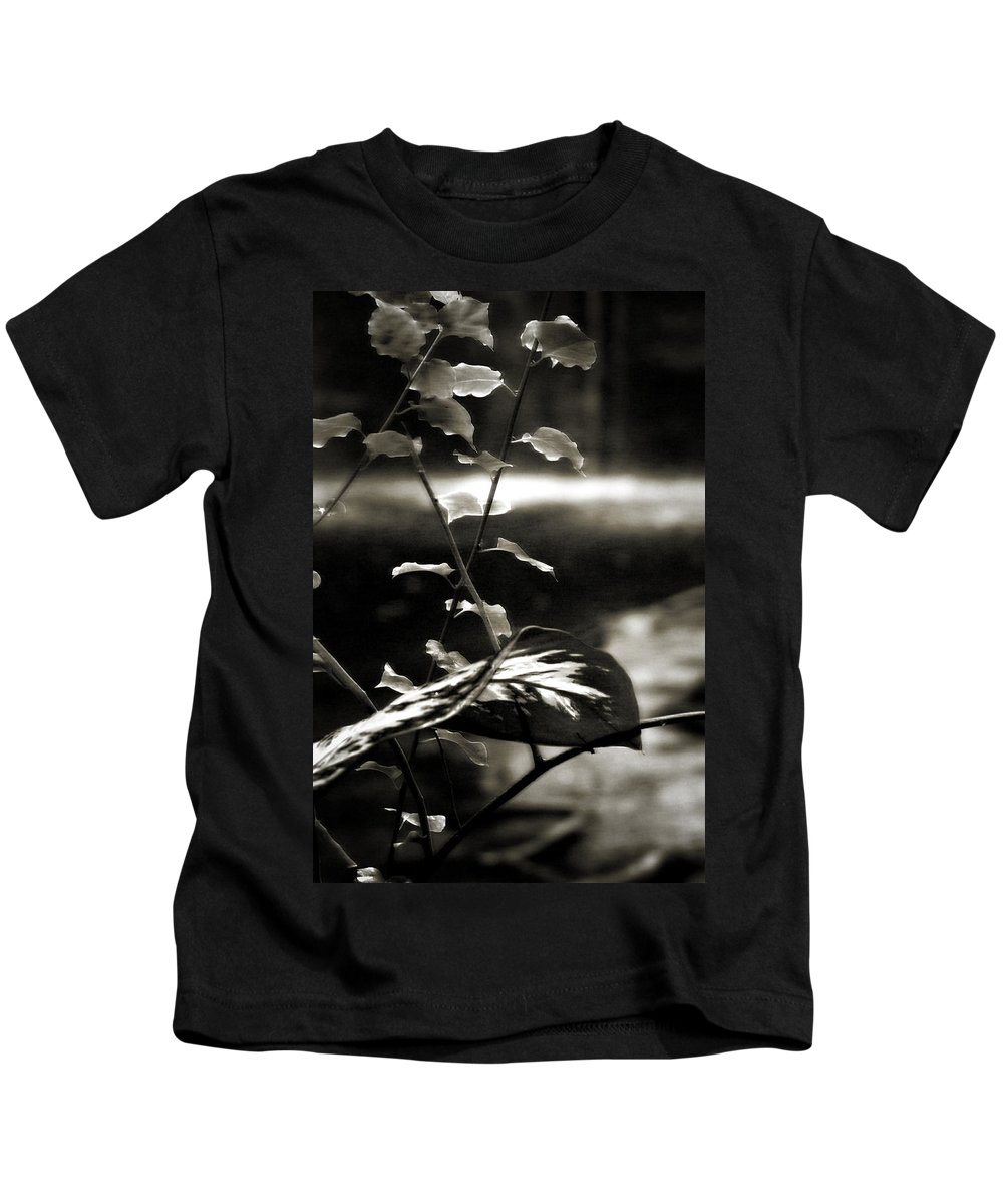 Fern Kids T-Shirt featuring the photograph Plant 8657 by Timothy Bischoff