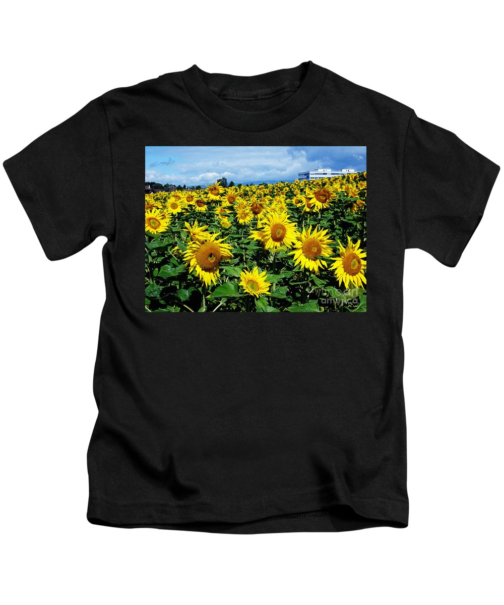 Sunflowers Kids T-Shirt featuring the photograph Pleasant Warmth by Jeff Barrett