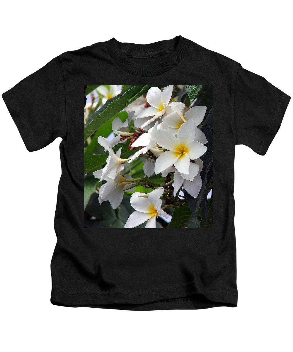 Flower Kids T-Shirt featuring the photograph Plumeria by Robert Meanor