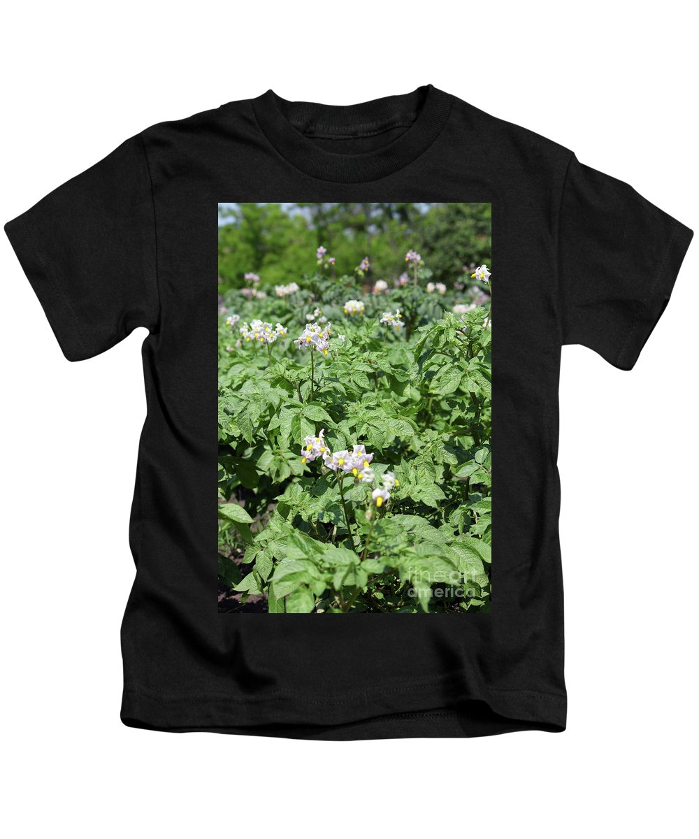 Potato Kids T-Shirt featuring the photograph Potato Flower Agriculture Spring Scene by Goce Risteski