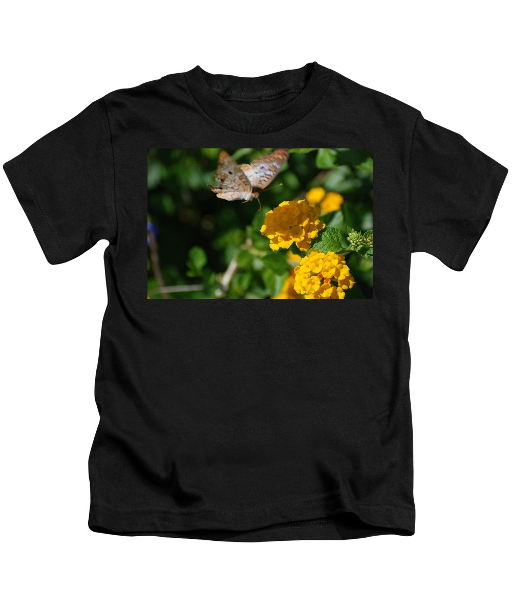 Butterfly Kids T-Shirt featuring the photograph Pre Landing by Rob Hans
