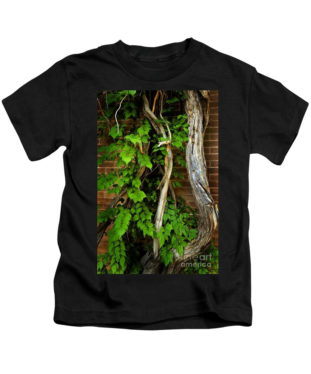 Preston Castle Kids T-Shirt featuring the photograph Preston Wall Vine by Norman Andrus