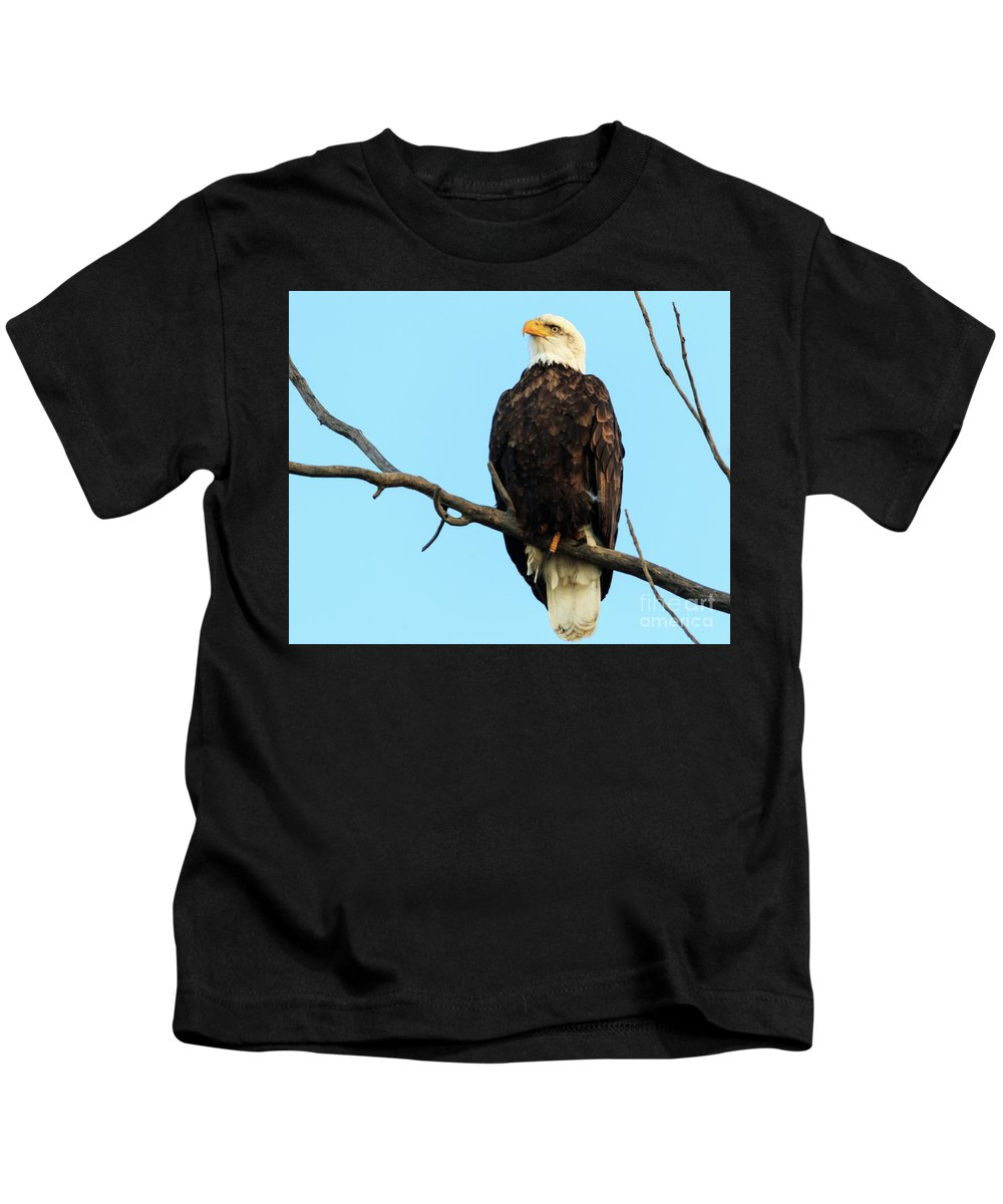 Eagles Kids T-Shirt featuring the photograph Proud Eagle by Terri Morris