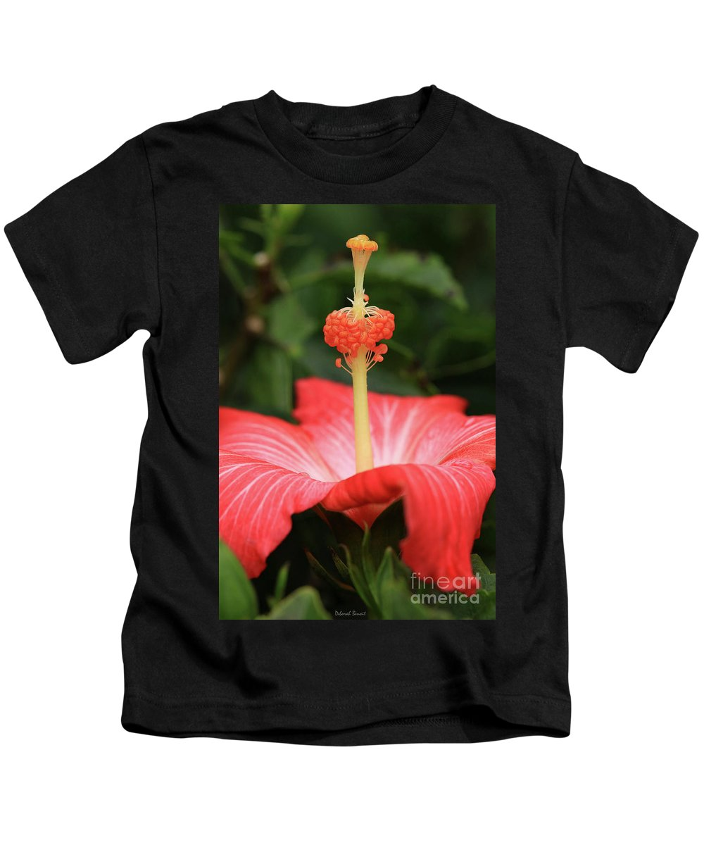 Hibiscus Kids T-Shirt featuring the photograph Provocative Hibiscus by Deborah Benoit