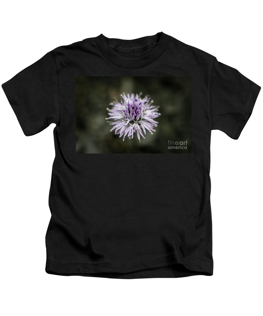 Colorado Kids T-Shirt featuring the photograph Purple Bloom by Ashley M Conger