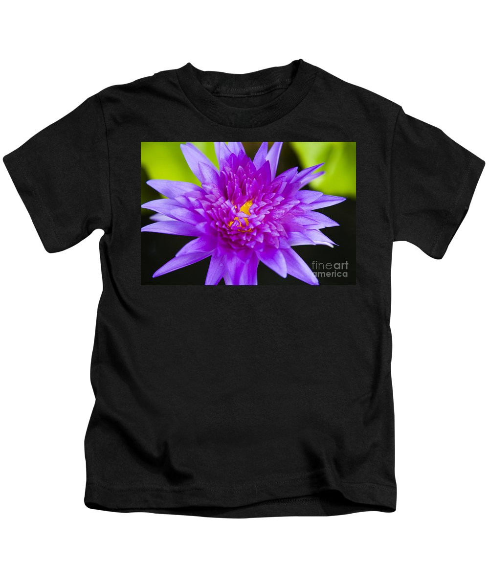 Afternoon Kids T-Shirt featuring the photograph Purple Lotus by Dana Edmunds - Printscapes