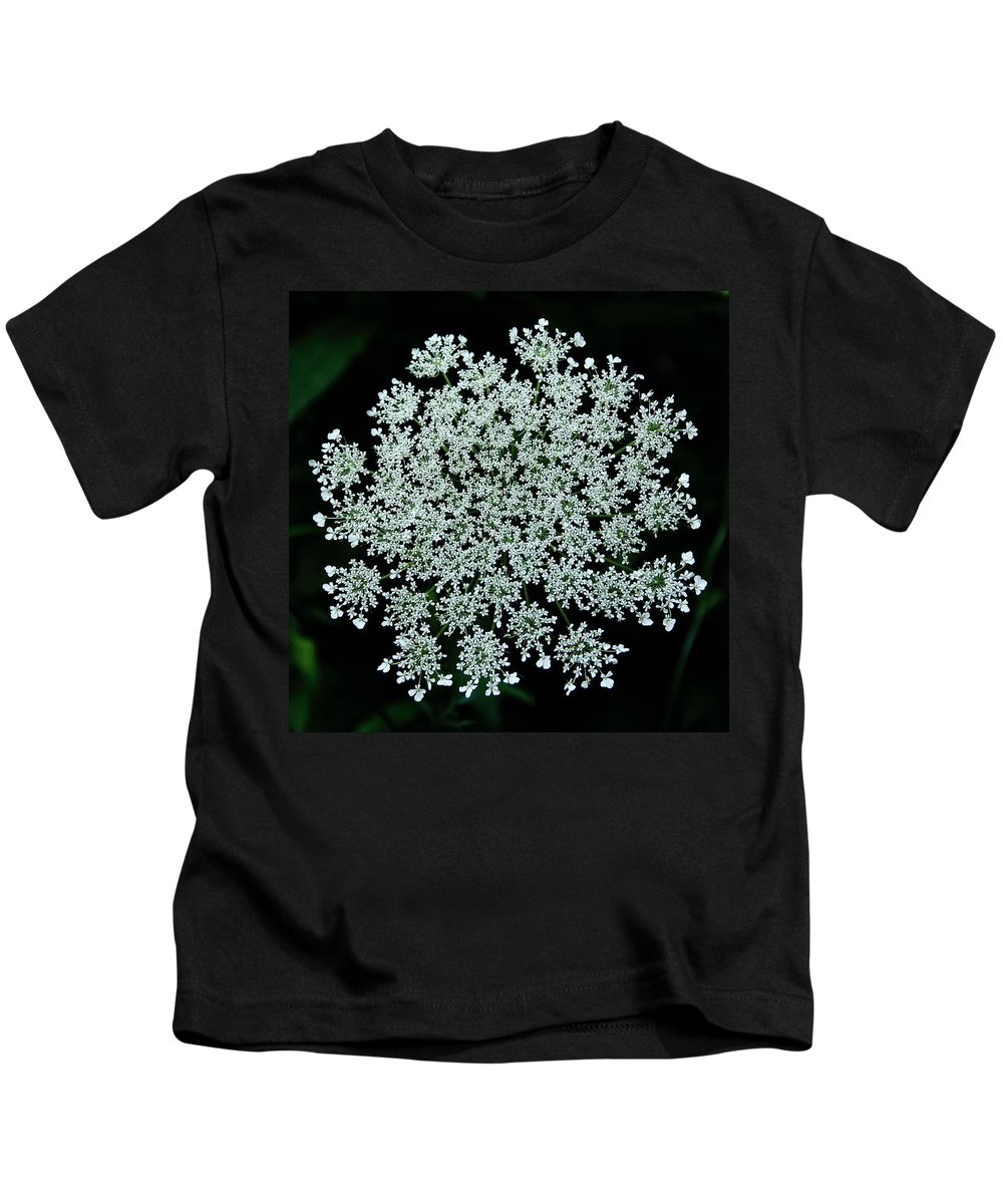 Queen Anne's Lace Kids T-Shirt featuring the photograph Queen Anne by Allen Nice-Webb