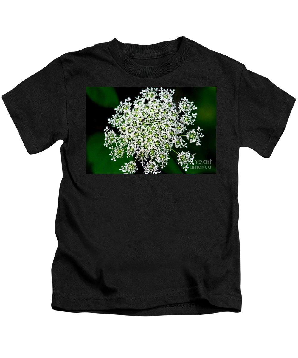 Queens Lace Kids T-Shirt featuring the photograph Queens Lace Flower by Sophia Tallant