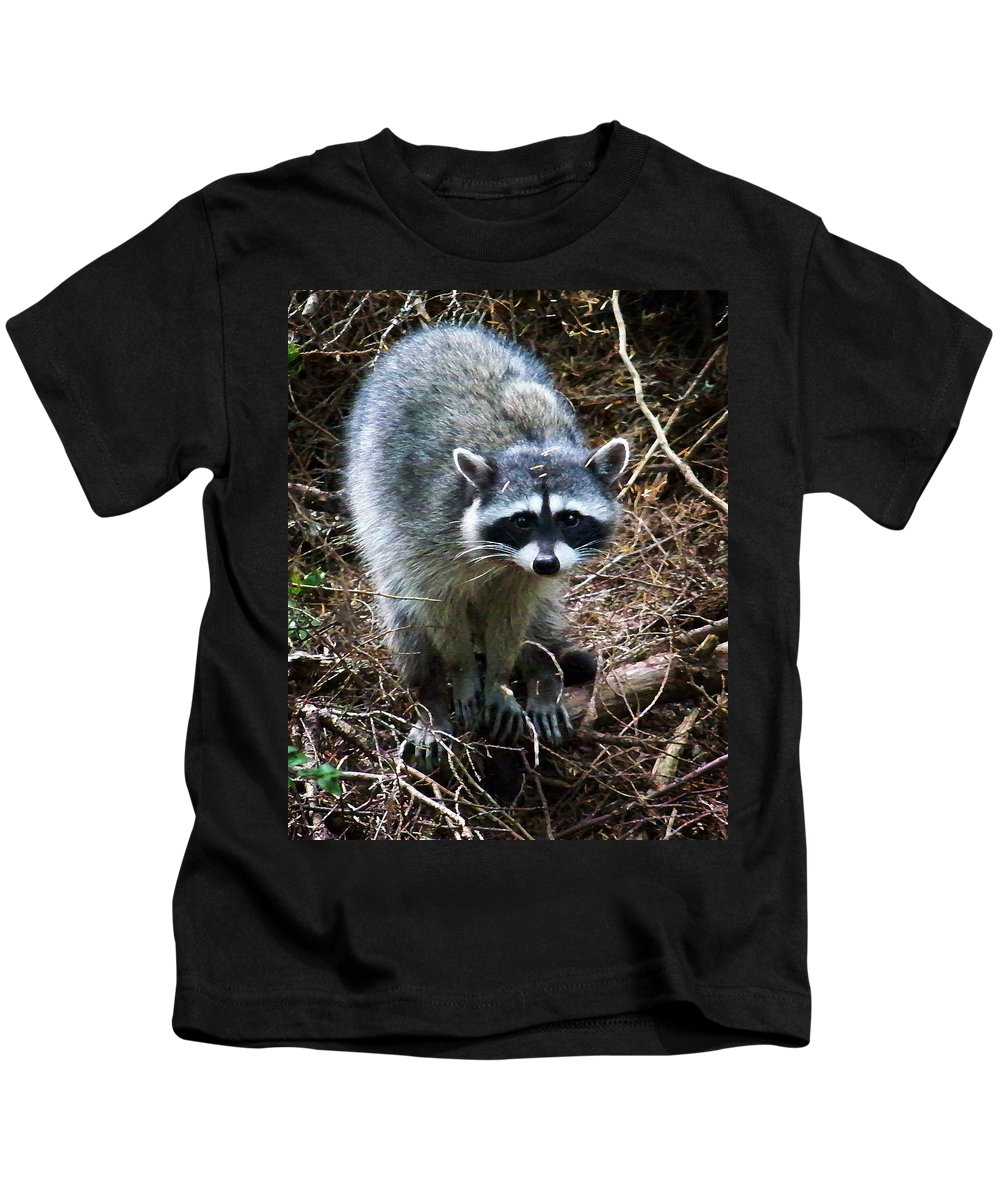 Painting Kids T-Shirt featuring the photograph Raccoon by Anthony Jones