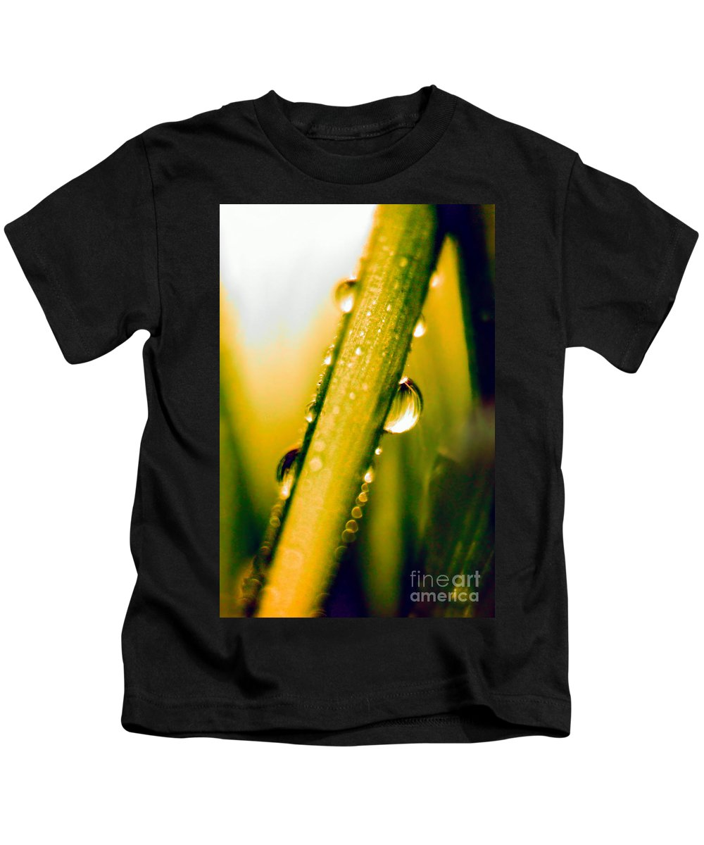 Raindrops On A Blade Of Grass Kids T-Shirt featuring the photograph Raindrops On A Blade Of Grass by Mariola Bitner