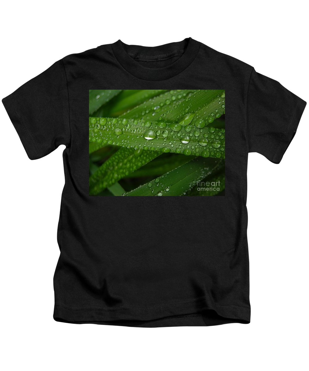 Rain Kids T-Shirt featuring the photograph Raindrops On Green Leaves by Carol Groenen