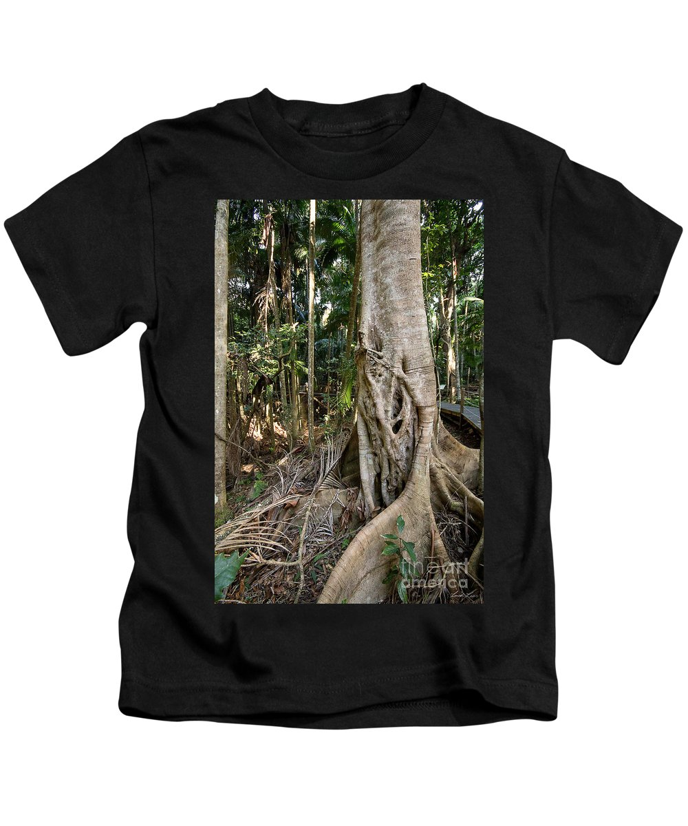 Tree Kids T-Shirt featuring the photograph Rainforest Majesty by Linda Lees