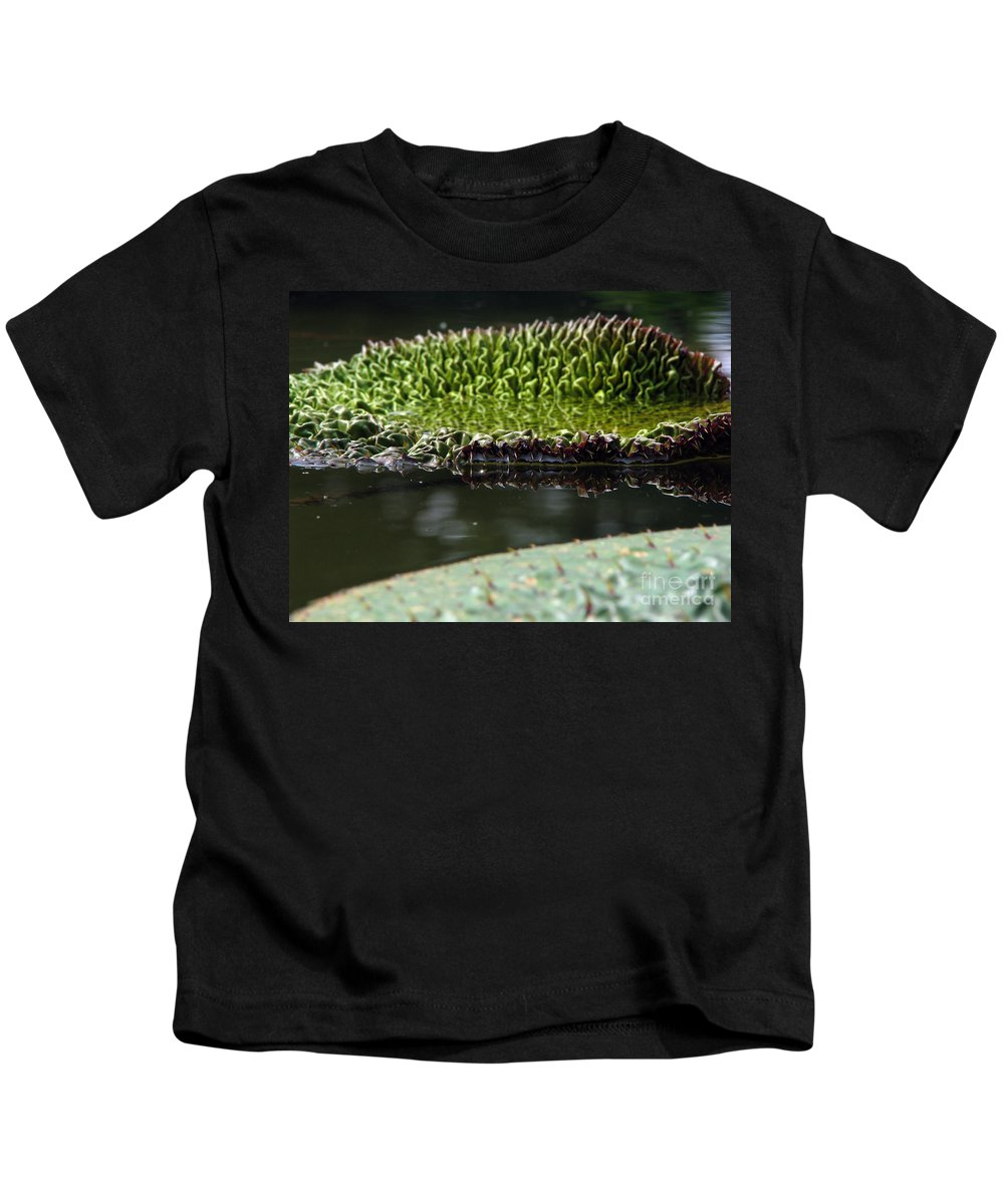 Lillypad Kids T-Shirt featuring the photograph Ready To Spread by Amanda Barcon