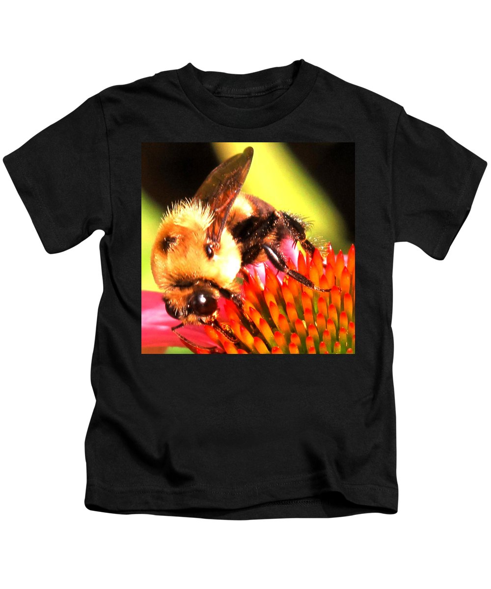 Bee Kids T-Shirt featuring the photograph Really Getting Into It by Ian MacDonald