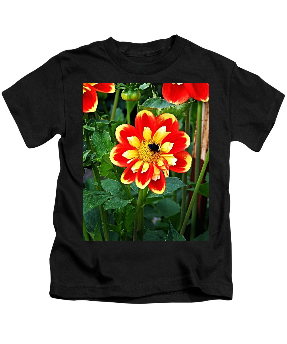 Flower Kids T-Shirt featuring the photograph Red And Yellow Flower With Bee by Anthony Jones