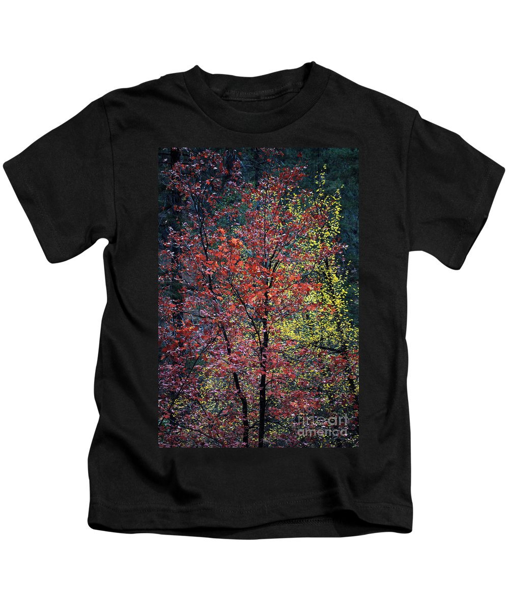 Landscape Kids T-Shirt featuring the photograph Red And Yellow Leaves Abstract Vertical Number 1 by Heather Kirk