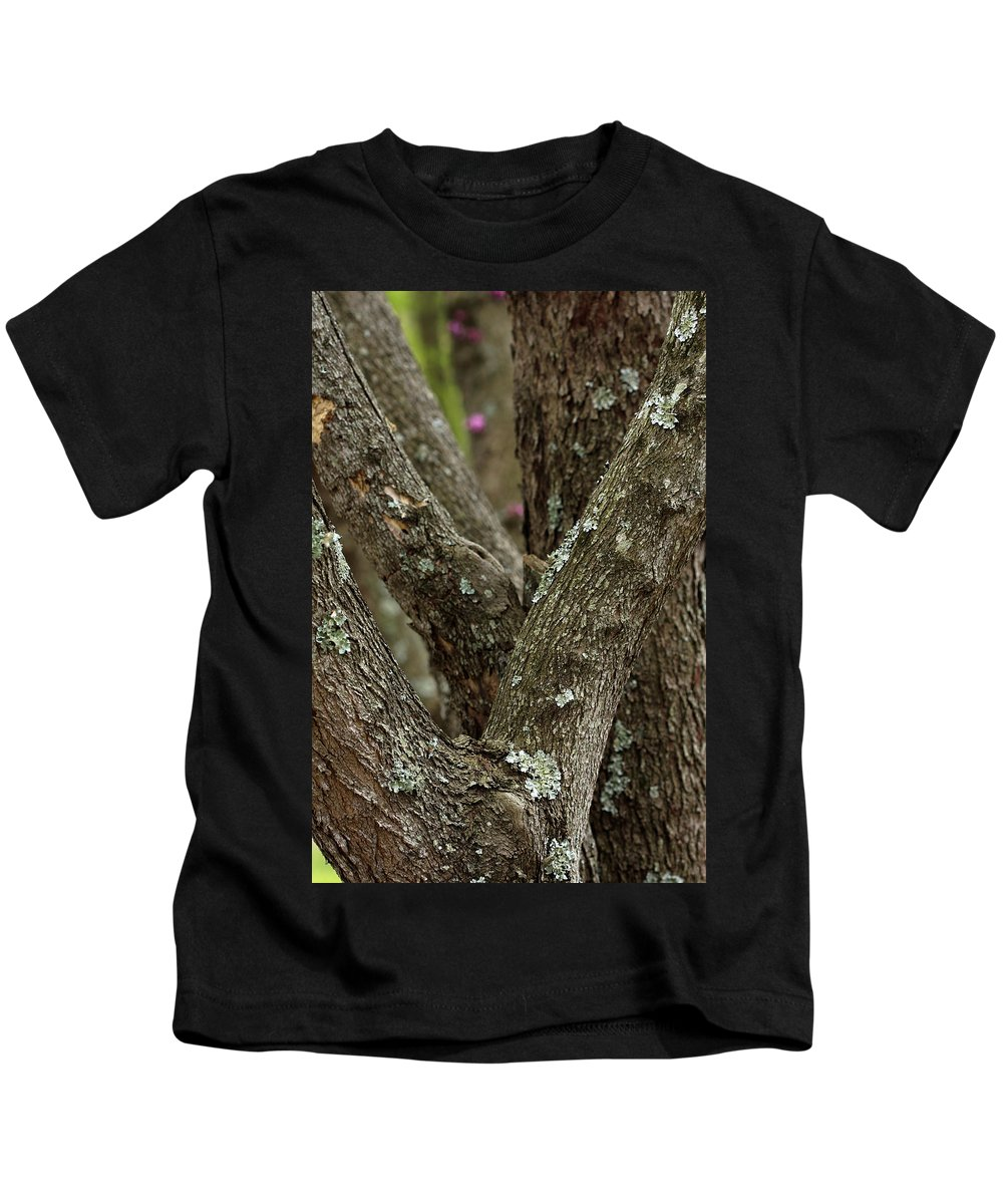 Red Bud Trees Kids T-Shirt featuring the photograph Red Bud Row by Kim Henderson