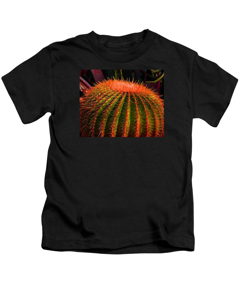 Cactus Kids T-Shirt featuring the photograph Red Cactus by John Malmquist