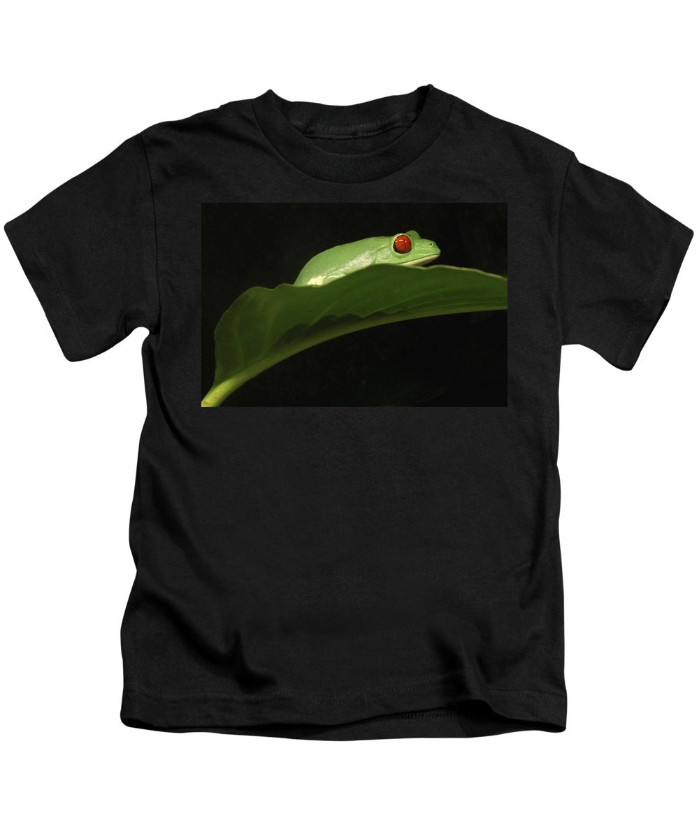 Frog Kids T-Shirt featuring the photograph Red Eye Frog by Nancy Griswold