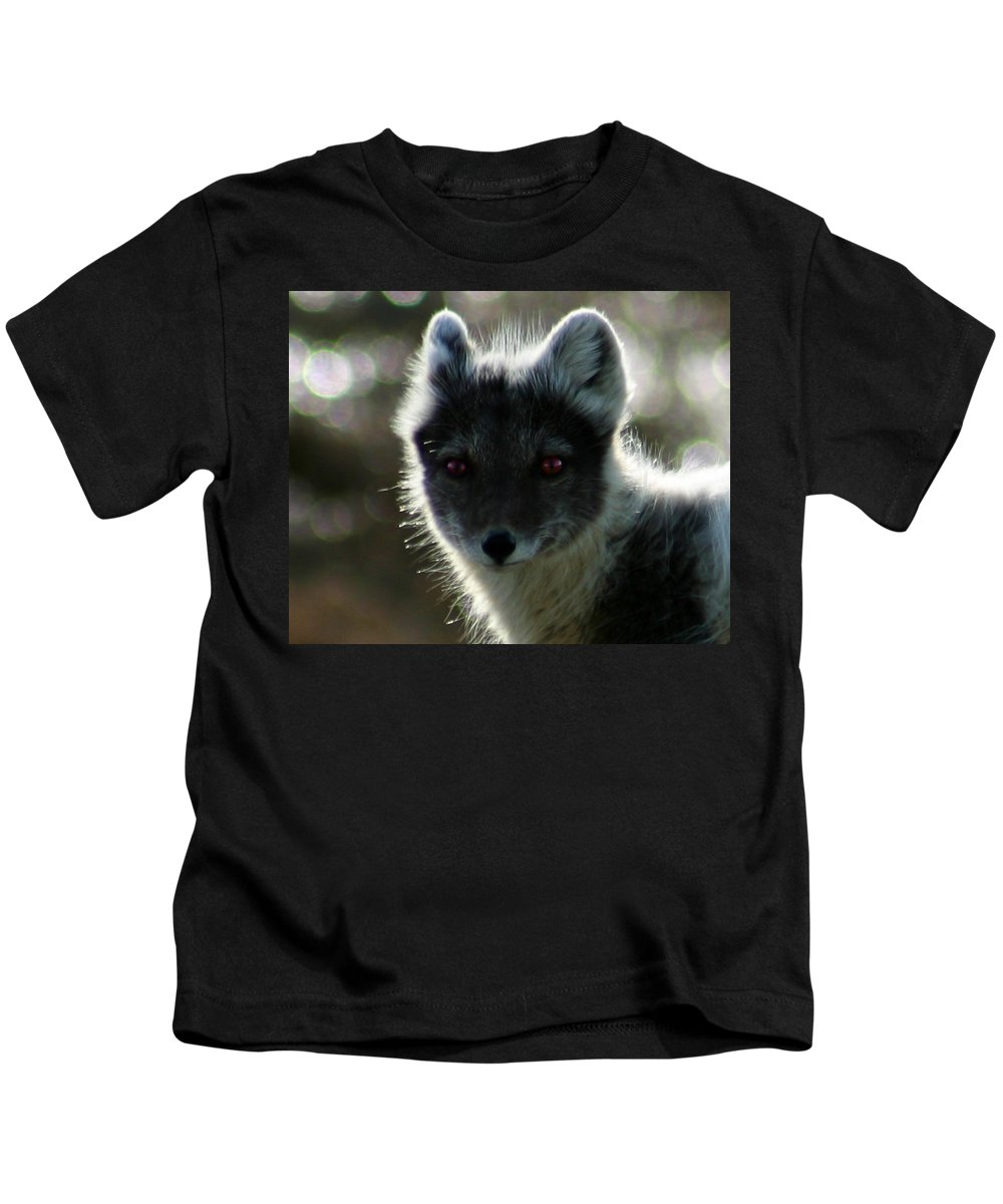 Arctic Fox Kids T-Shirt featuring the photograph Red Eyes by Anthony Jones