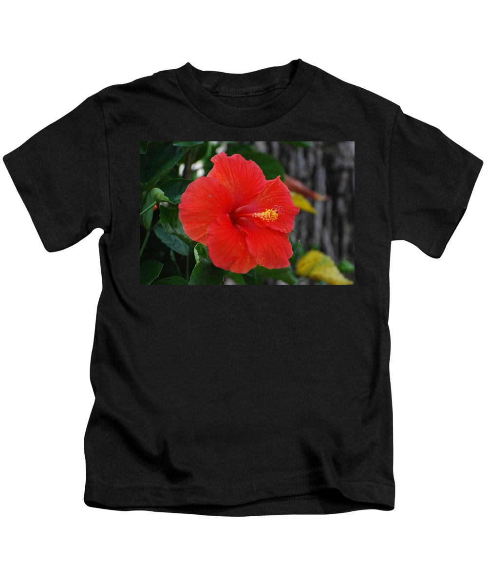 Flowers Kids T-Shirt featuring the photograph Red Flower by Rob Hans
