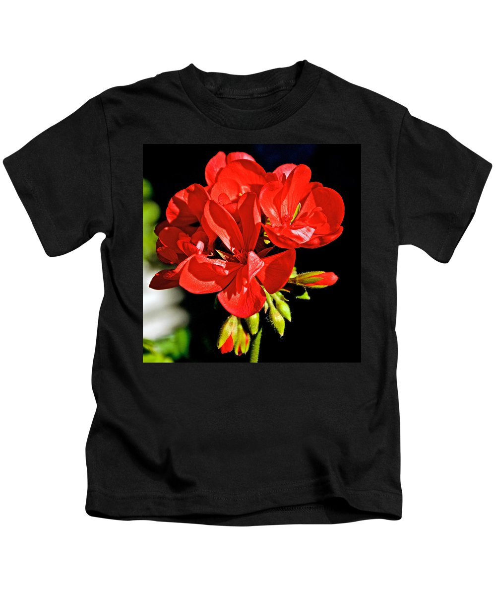 Red Geraniums In February At Pilgrim Place In Claremont Kids T-Shirt featuring the photograph Red Geranium At Pilgrim Place In Claremont-california by Ruth Hager