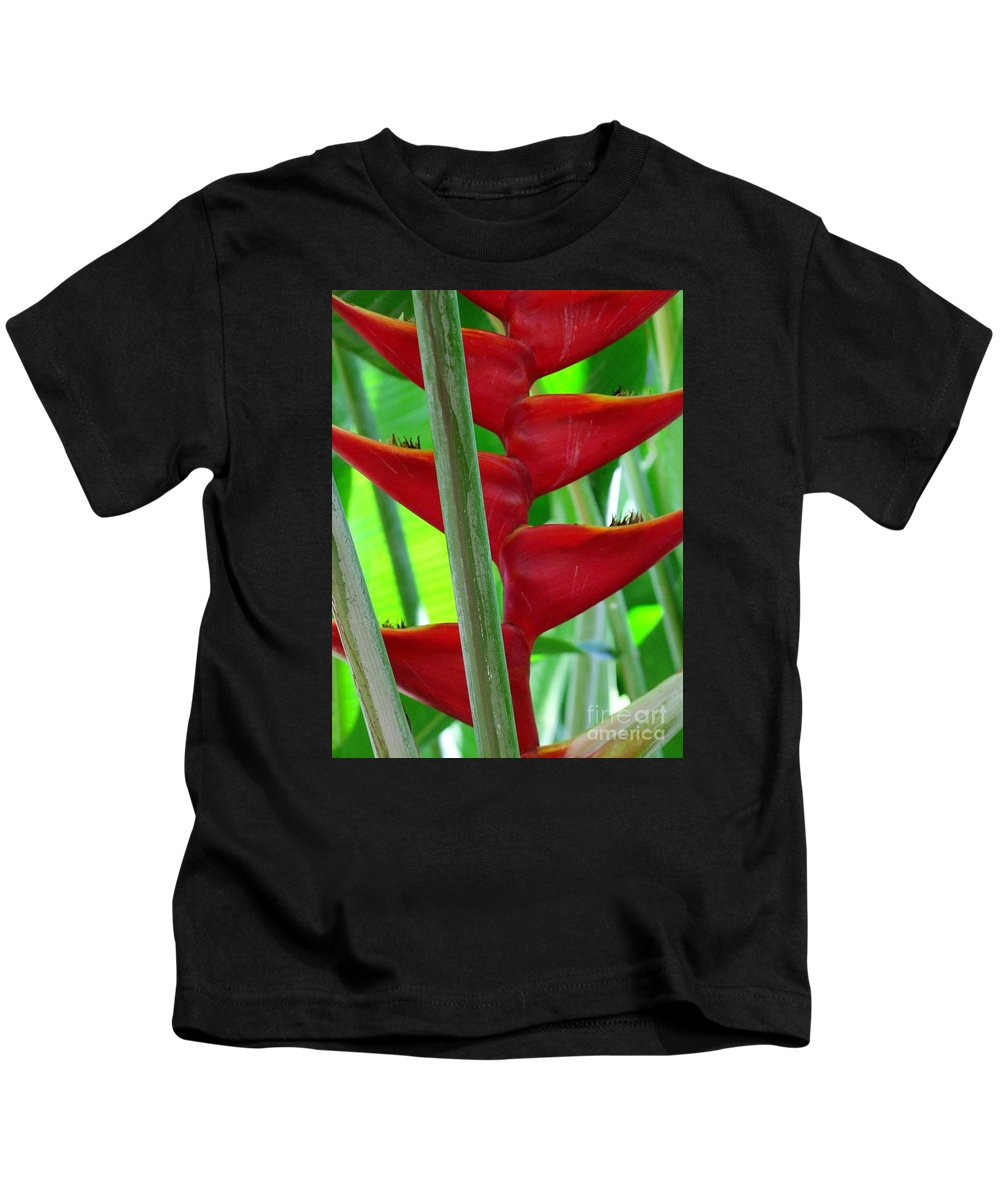 Red Flowers Kids T-Shirt featuring the photograph Red Heliconia by Mary Deal