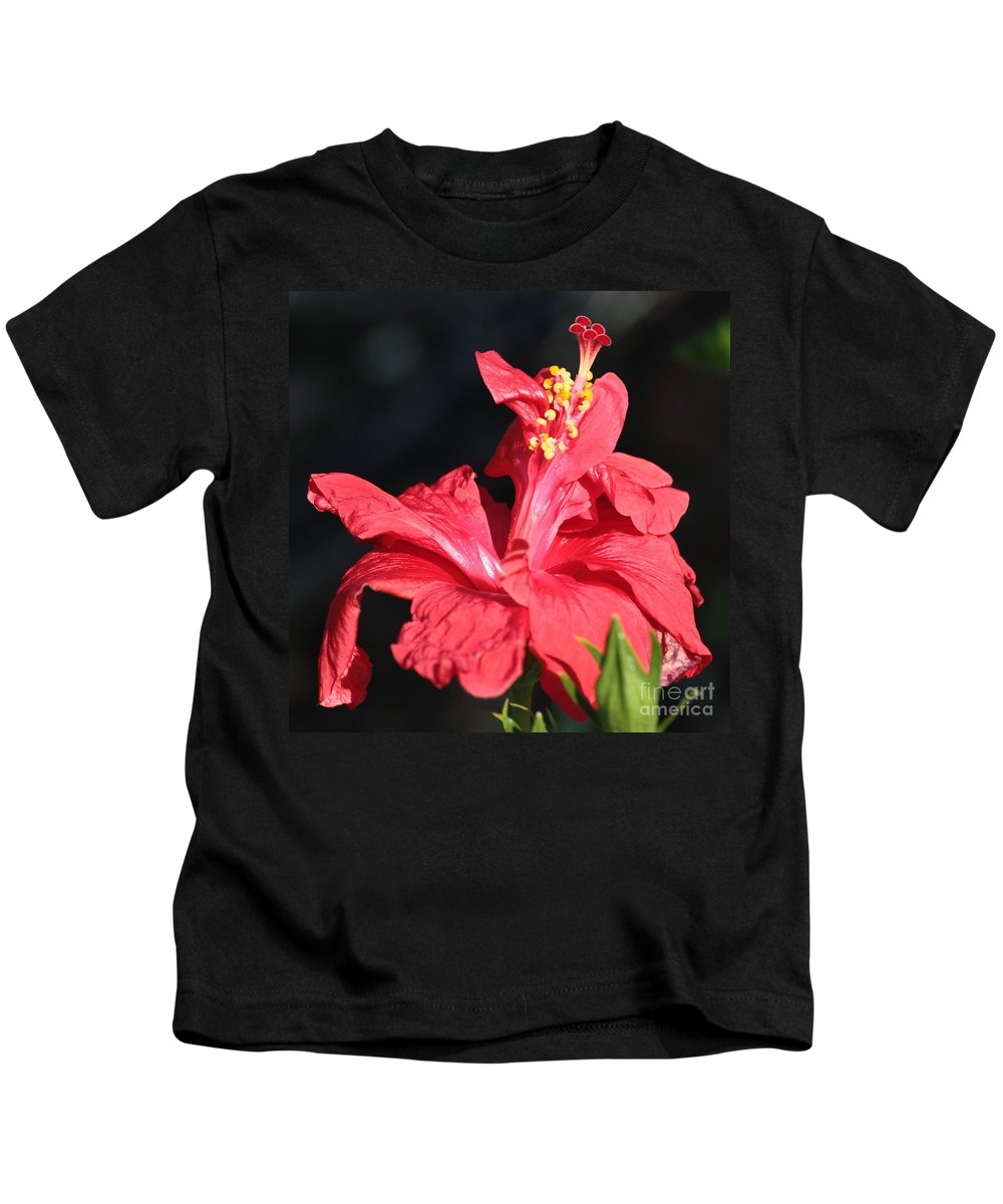 Red Hibiscus Kids T-Shirt featuring the photograph Red Hibiscus Square 2 by Carol Groenen