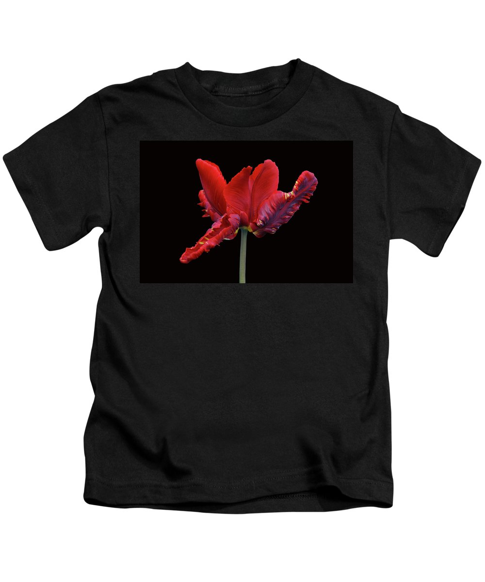 Tulip Kids T-Shirt featuring the photograph Red Parrot Tulip by Sandy Keeton