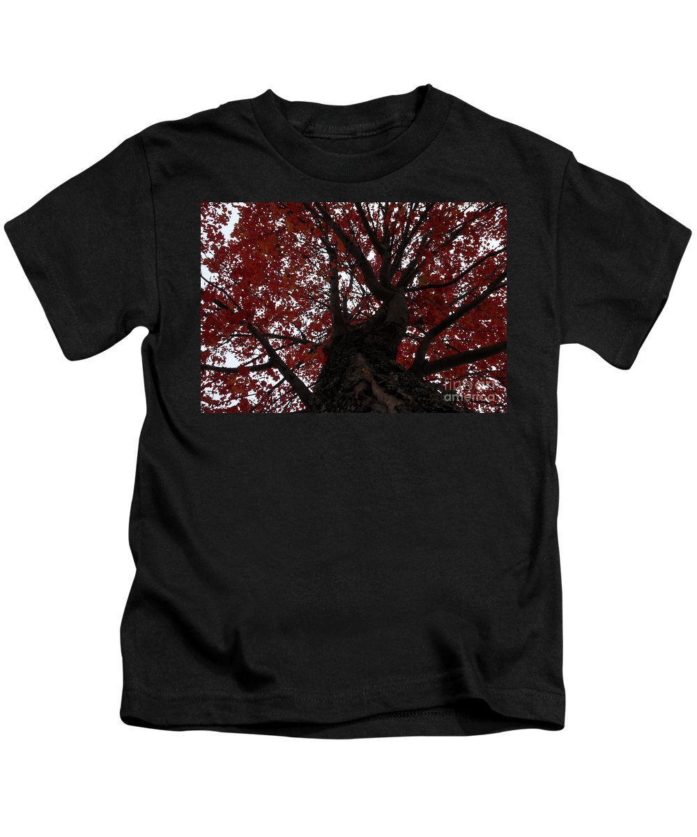 Fall Kids T-Shirt featuring the photograph Red Tree by David Lee Thompson