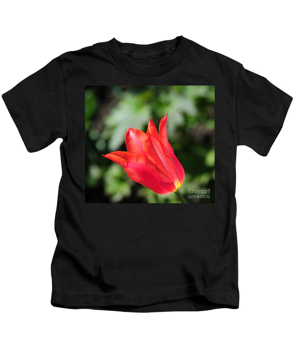 Red Kids T-Shirt featuring the photograph Red Tulip by Joe Ng