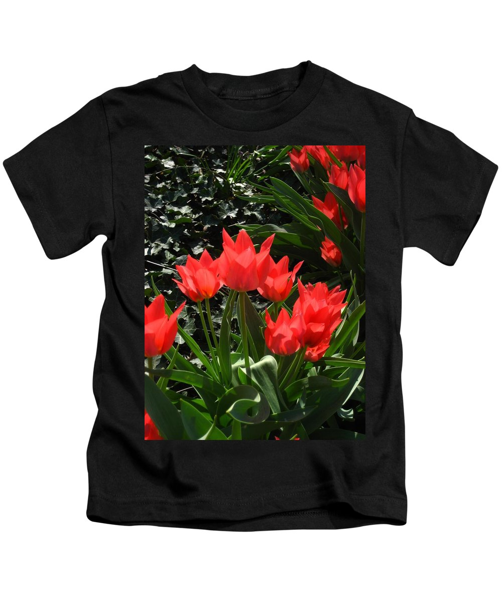 Flowers Kids T-Shirt featuring the photograph Red Tulips by Sherry Oliver
