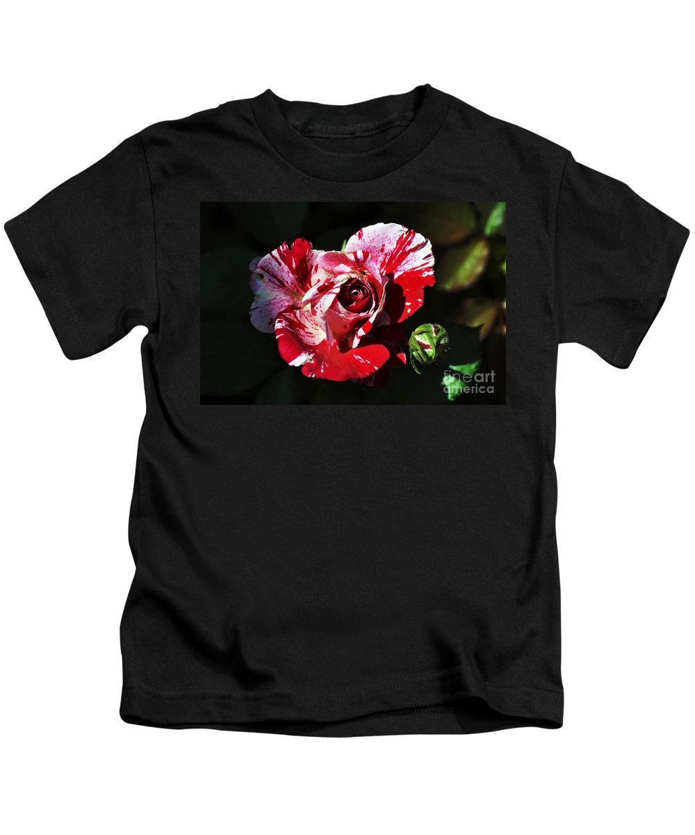 Clay Kids T-Shirt featuring the photograph Red Verigated Rose by Clayton Bruster