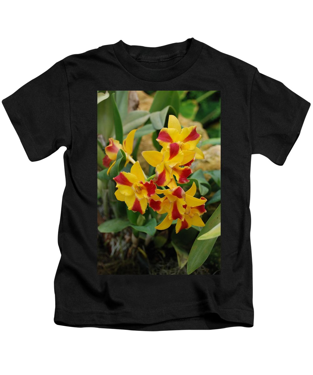 Macro Kids T-Shirt featuring the photograph Red Yellow Orchids by Rob Hans