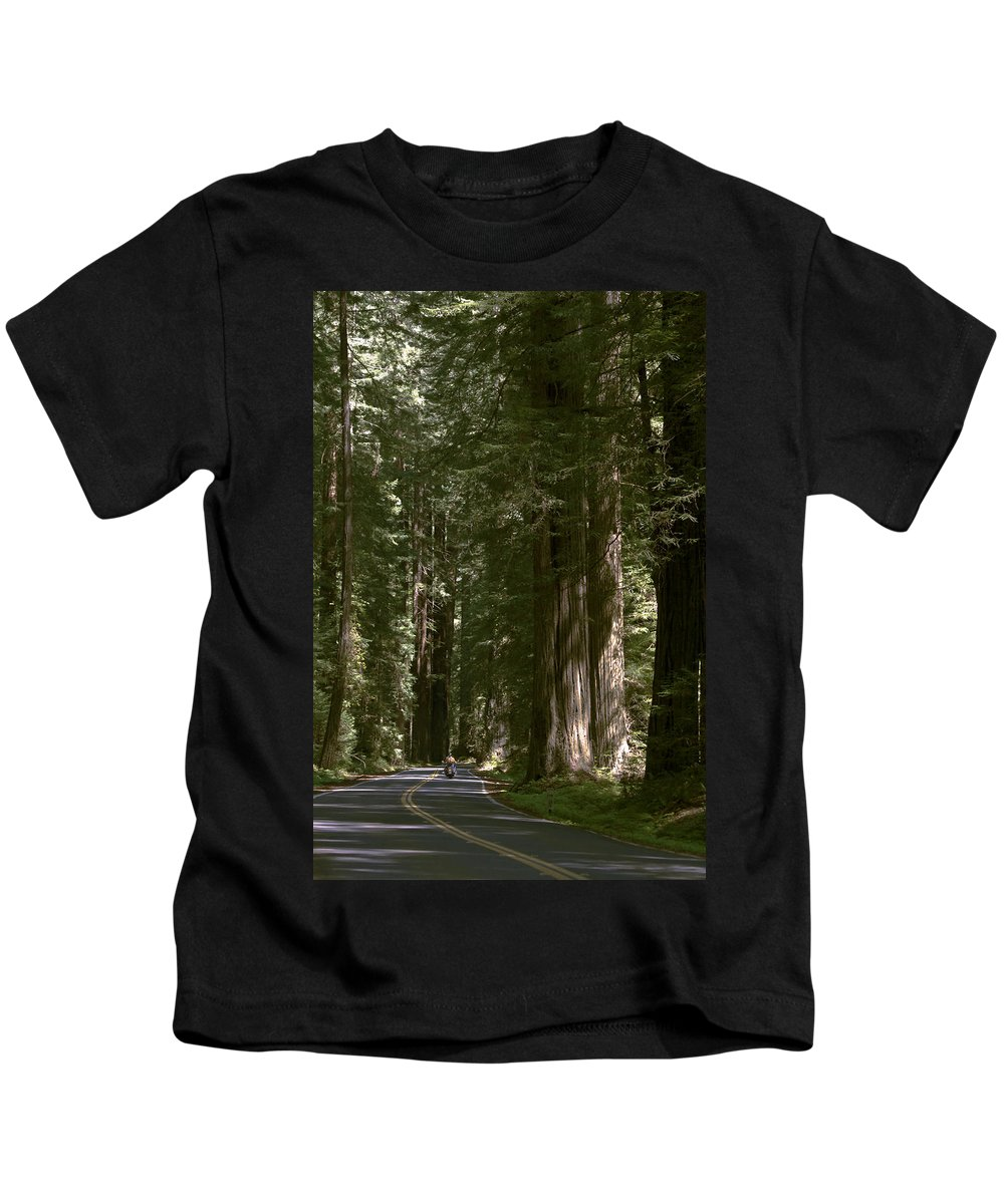 Redwood Highway Kids T-Shirt featuring the photograph Redwood Highway by Wes and Dotty Weber