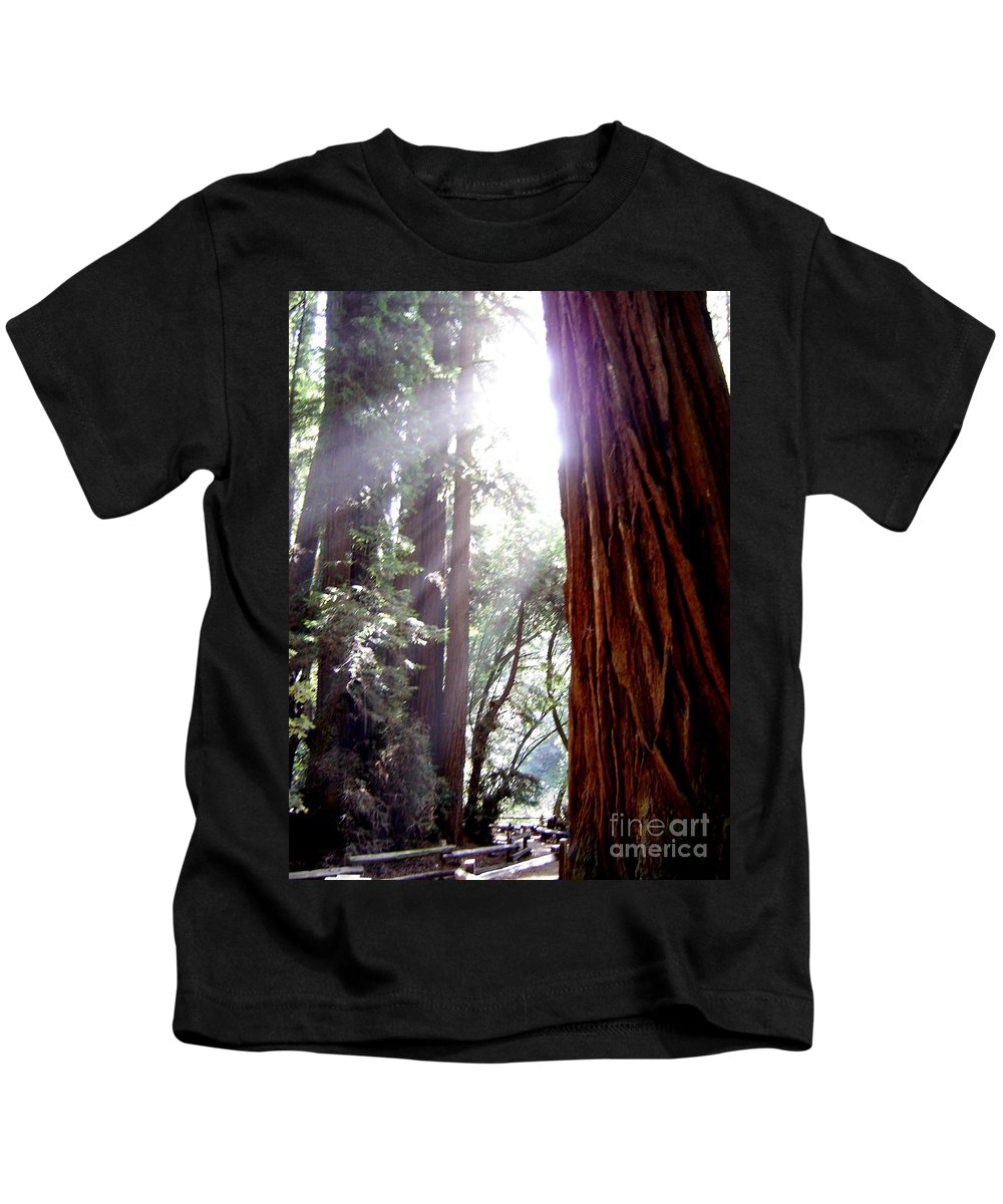 Redwoods Kids T-Shirt featuring the photograph Redwood Sunlight by Mary Rogers