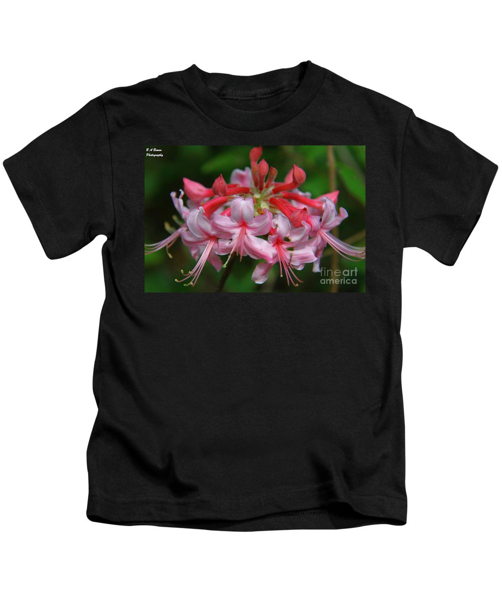 Wild Azalea Kids T-Shirt featuring the photograph Rich Pink Blossoms by Barbara Bowen