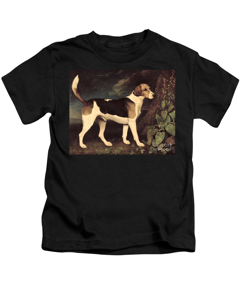 George Stubbs Kids T-Shirt featuring the painting Ringwood by George Stubbs