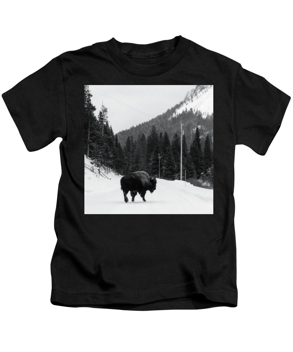 Bison Kids T-Shirt featuring the photograph Road Block by Ladibug Love